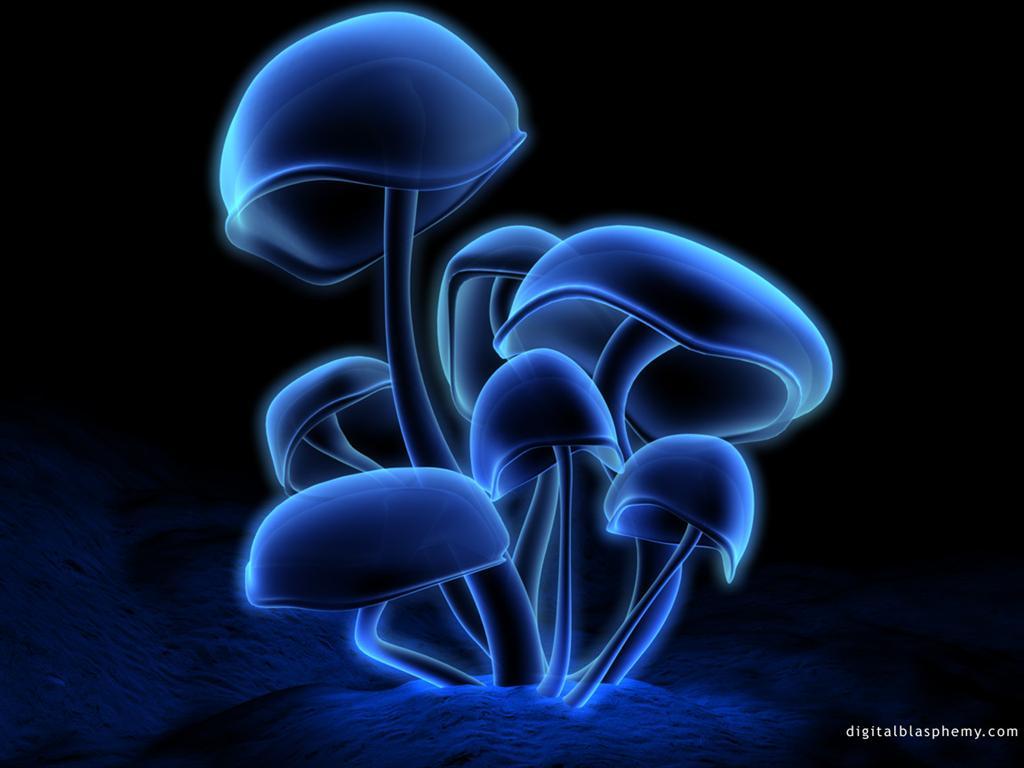 http://home.deds.nl/~rolandvb/blue2/fluorescence6.jpg